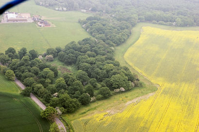 A view of Alvecote Wood from the air