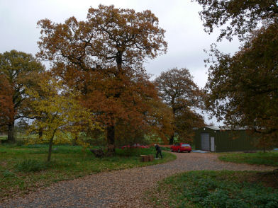 New building in Autumn at Alvecote Wood