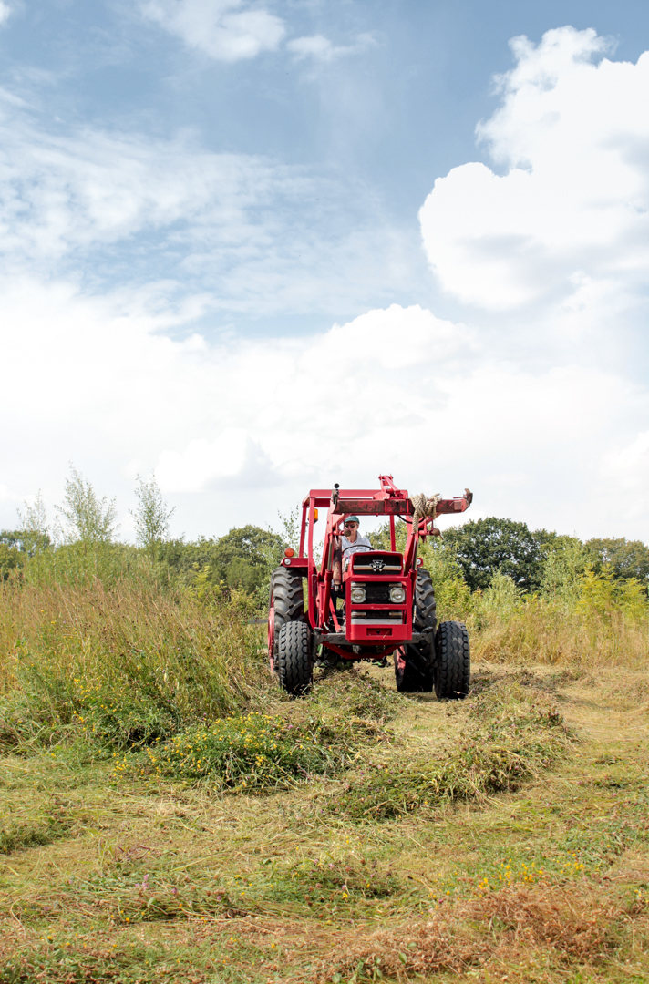 Haymaking at Alvecote Wood